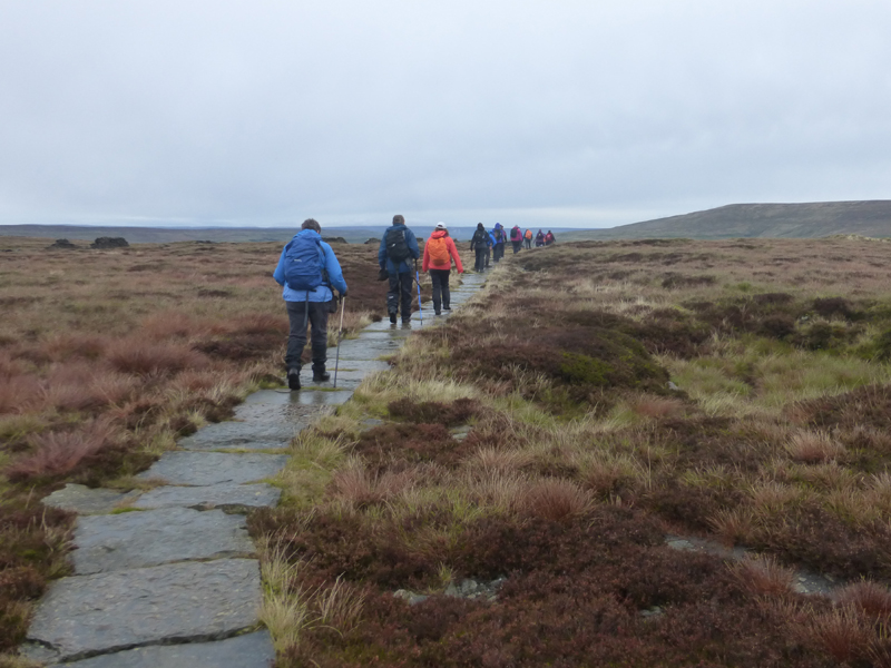 Path Across The Moors